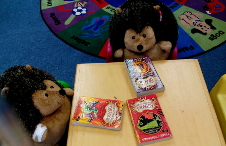 Toy Hedgehogs reading at Glanmire Library